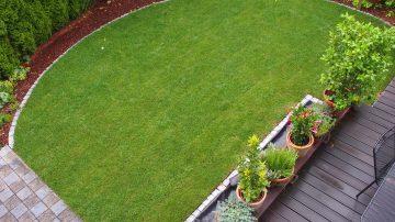 Neuanlage von Rasenflächen